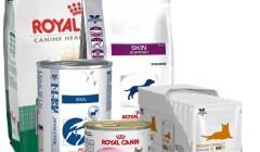 Лікувальні та фізіологічні корми для собак та котів